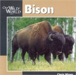 WildWorldBison